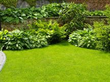 Landscape Contractors, Find the very best Residential ...
