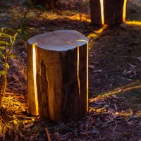 What To Do With Tree Stumps - Landscaping Frisco