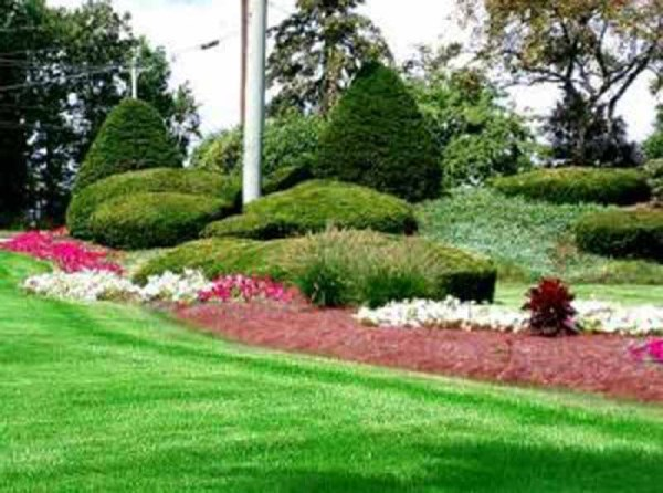 projects landscaping services