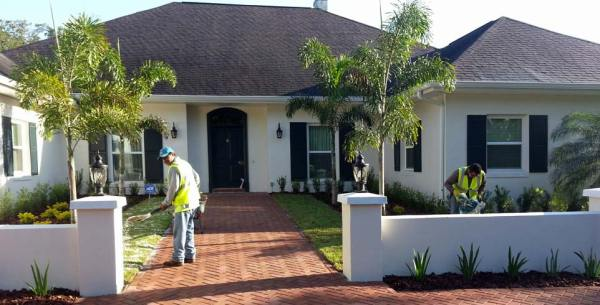 landscaping tampa properties