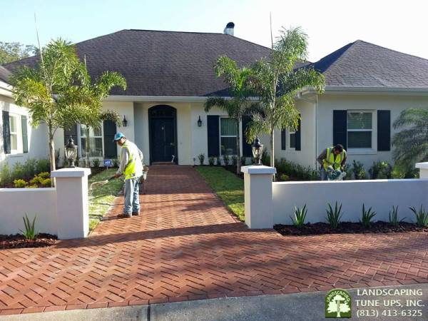 tampa landscaping home
