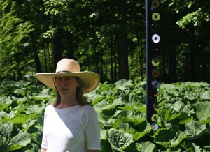 Contact Land Stewardship Designer and Project Manager Barbara Hughey