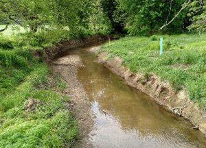 logan-park-floodplain-restoration-looking-downstream-form-bridge-before