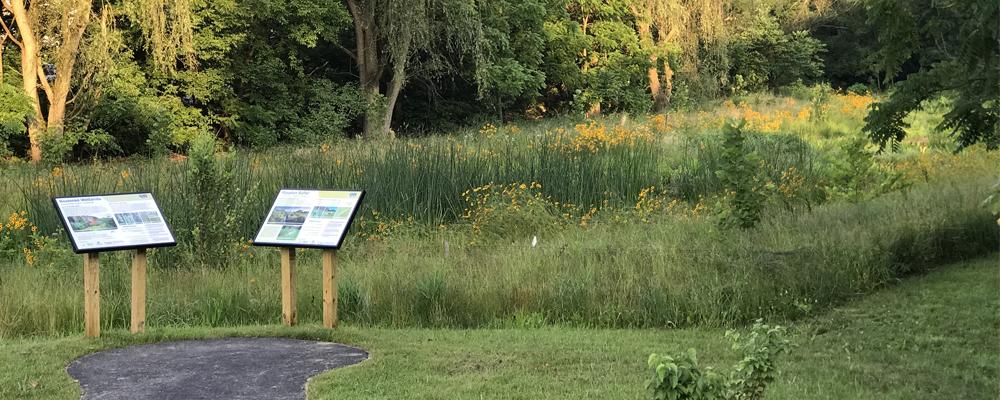Lititz Run at Oak Street Floodplain Wetland Restoration