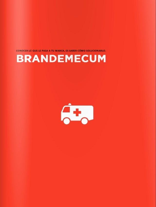 EBDLN-Brandemecum-Brazai-1