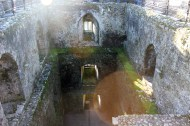 Also taken while in Ireland, this photo is from the top of the Blarney Castle, I love the sun flare, colors and depth this photo shows. This has not been edited.