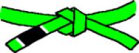 巴西柔术MMA跆拳道绿带