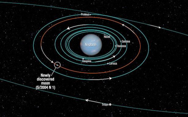 Diagram yang menunjukkan orbit beberapa satelit Neptunus, termasuk S/2004 N 1. Kredit: NASA, ESA, dan A. Feild (STScI).