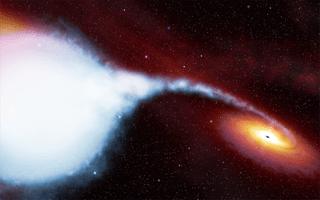 Bergabungnya dua lubang hitam. Kredit: STScI