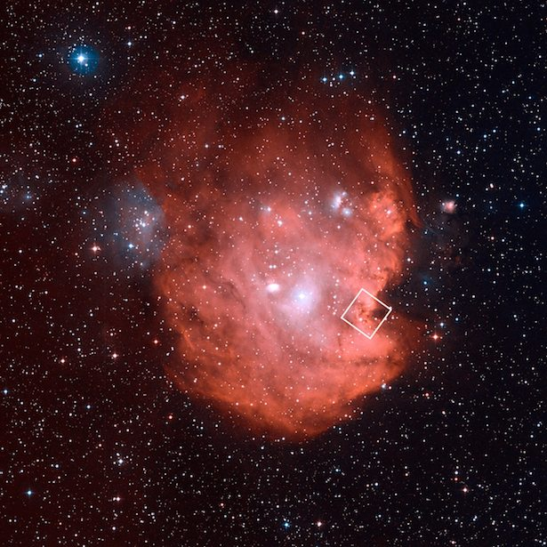 Nebula Kepala Monyet dalam warna merah muda. Kredit: NASA, ESA, Digitized Sky Survey (DSS), STScI/AURA, Palomar/Caltech