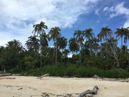Pulau Plun. Kredit: Avivah Yamani
