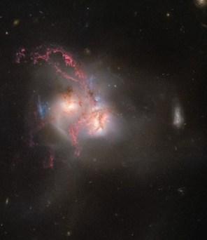 Foto ini memperlihatkan sebuah galaksi yang berwarna-warni tapi berbentuk ganjil. Bentuknya aneh karena sejatinya bukan hanya satu galaksi, melainkan dua galaksi. Kedua galaksi itu telah bertabrakan selama jutaan tahun. Karena tarikan gravitasi, keduanya perlahan-lahan menyatu menjadi satu galaksi yang lebih besar. Kredit: ESA/Hubble, NASA.