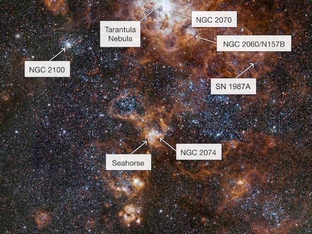 Nebula Tarantula yang dipotret VLT. Kredit: ESO
