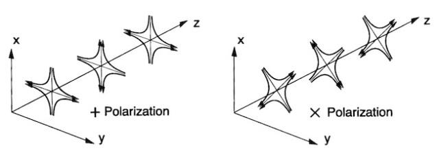 Arah polarisasi gelombang gravitasi. Sumber: insipirehep.net