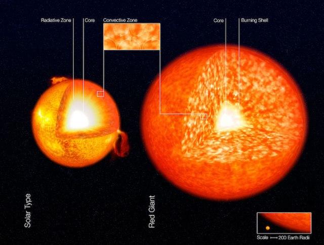 Ilustrasi zona konveksi pada bintang serupa Matahari dan Raksasa Merah. Kredit: ESO
