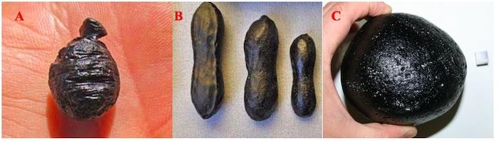 Gambar 3. Tiga macam tektit yang menjadi bagian grup tektit Australasia. a. Agni Mani atau Javanit, yang ditemukan di pulau Jawa. b. Australit sebanyak tiga butir berbentuk dumbell, yang ditemukan di Australia. Dan c. Filipinit, yang ditemukan di Filipina. Semuanya terbentuk dari satu sumber yang sama pada 790.000 tahun silam. Sumber: MeteoriteTimes.Com/Lehrman, 2012 & Tektites.co.uk/Aubrey, 2011.