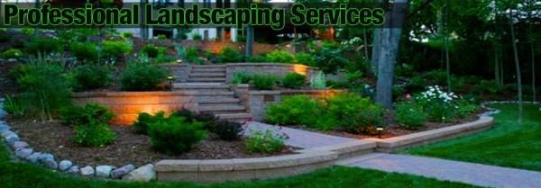 lang landscape llc professional