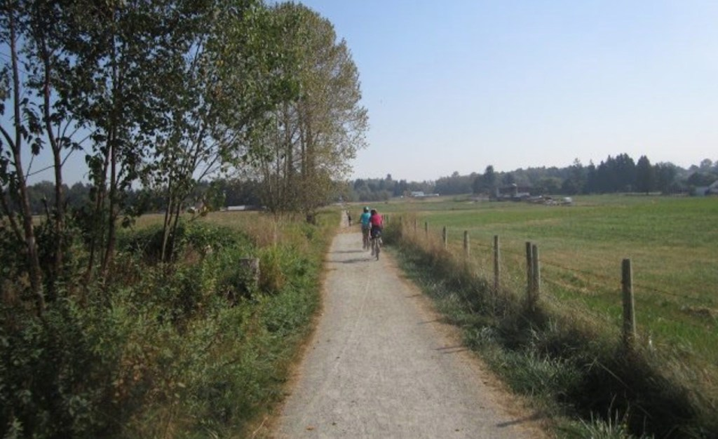 dog friendly hikes langley