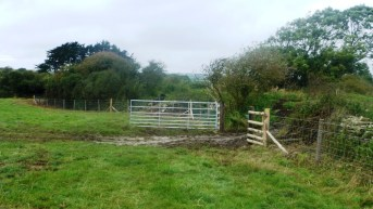 Priest's Way new fencing near verney farm
