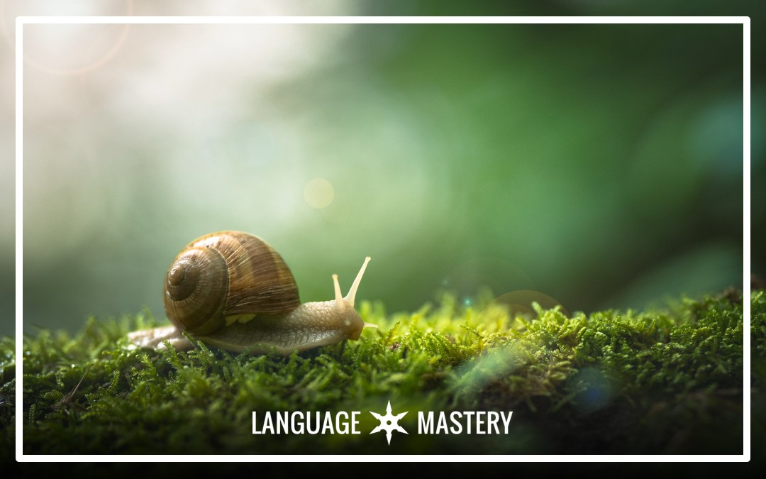 The Case for Slow: Why Faster Isn't Necessarily Better in Language Learning