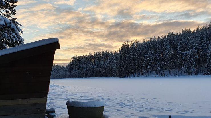 Vinterdagar