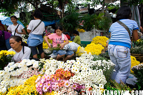 Vendors laying down their flowers. A part of the street was closed for them.