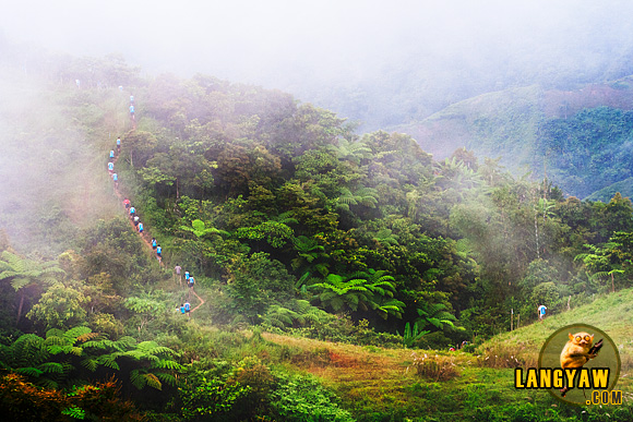 The rugged terrain of Central Cebu as an adventure racer's paradise