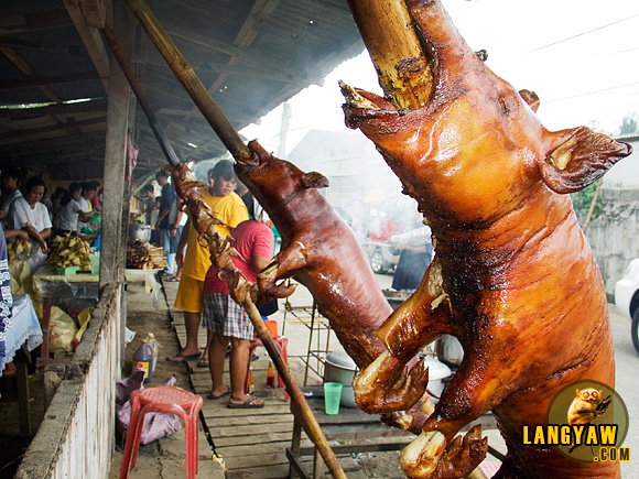 Rows of Talisay lechon is one of the best in the province and in the Philippines
