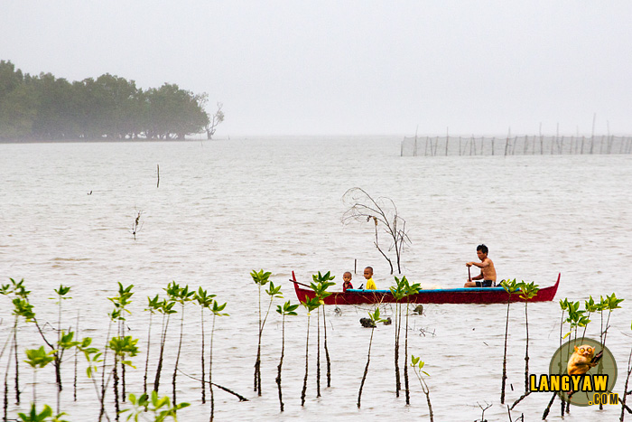 A boatman plies the still waters of the mangrove sanctuary