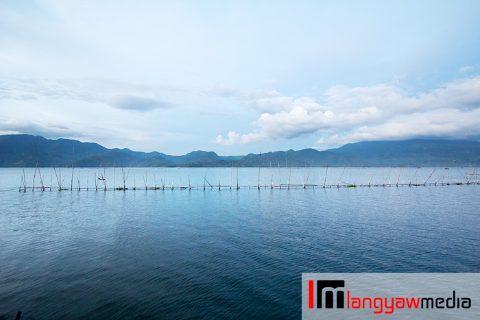 The placid waters of Lake Buhi, one of the few bodies of water in Camarines Sur where the sinarapan makes its home