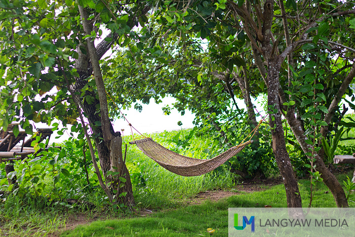 I miss the days of just lying on a hammock by the sea and feeling the wind