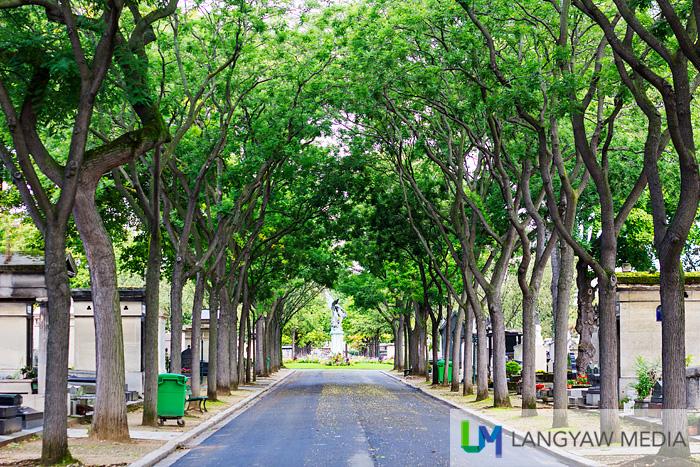 Tree lined road in Cimetiere de Montparnasse