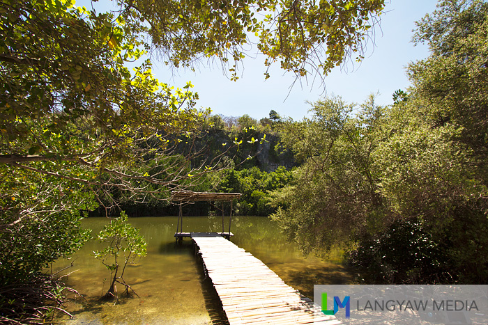 A lagoon perfect for kayaking is surrounded by mangroves