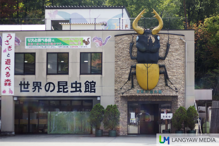 The insect museum with its giant stag beetle just above the entrance