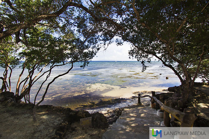 Beautiful shaded pathway to the beach at low tide