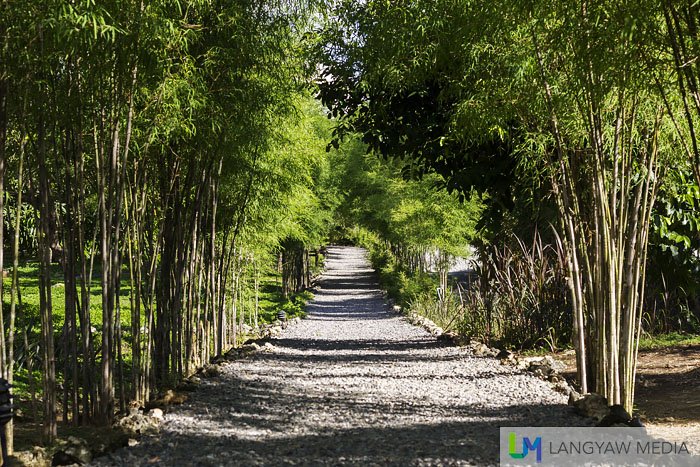 Beautiful bamboo lined gravel pathway. When we were here, we often opted to just walk although you can also ride the golf cart