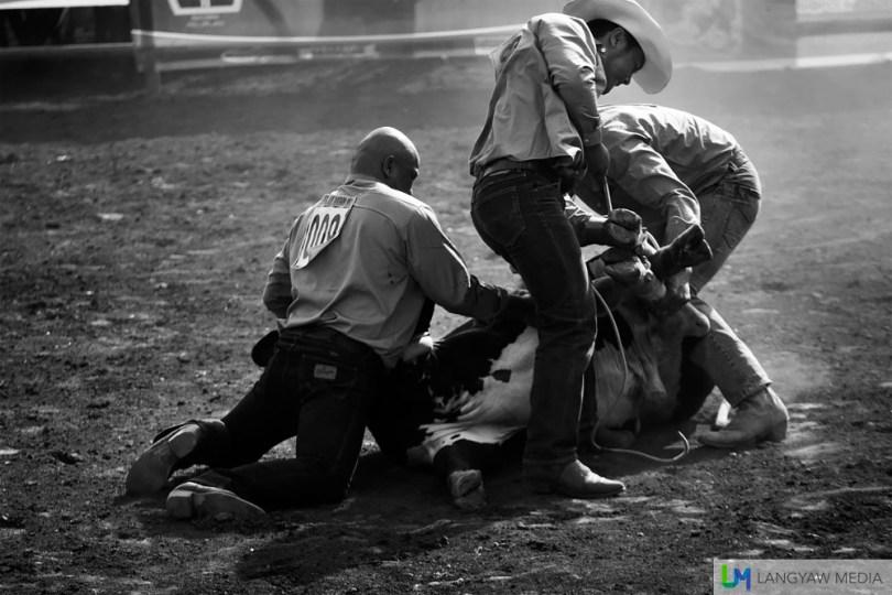 Kaamulan Cowboys