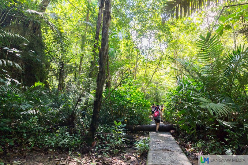 I just love the greenery while trekking at the forest to Gua Batu. It's not really difficult as there is a well paved, cement path.
