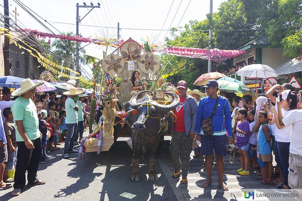 Pulilan Kneeling Carabao Festival