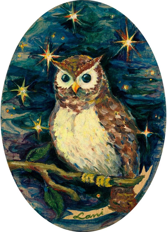 An Owl Show