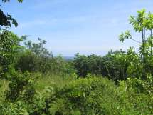 Ocean And Jungle Views Unawatuna Lanka Real Estate