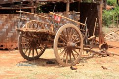 Pa'O village cart
