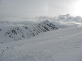 Niwot Ridge, snow depth sensor array, January 2011