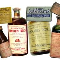 Cambiemos accedió a debatir uso medicinal de marihuana