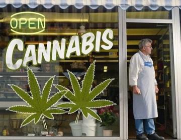 California estrena el 2018 con el  mayor mercado de marihuana legal recreativa del mundo
