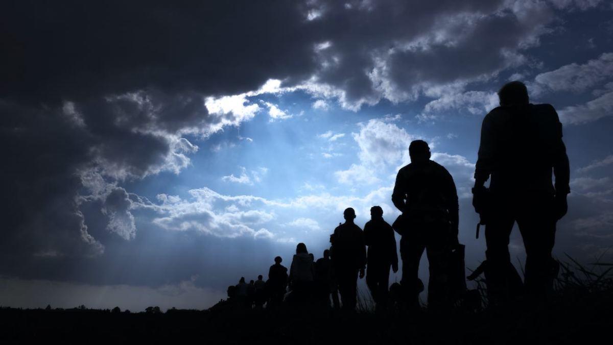 El 99 % de los solicitantes de asilo sí se presentan a las audiencias