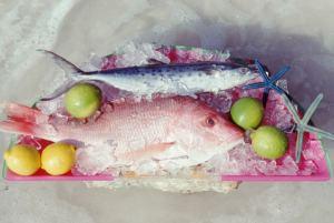 Tres formas seguras de descongelar alimentos