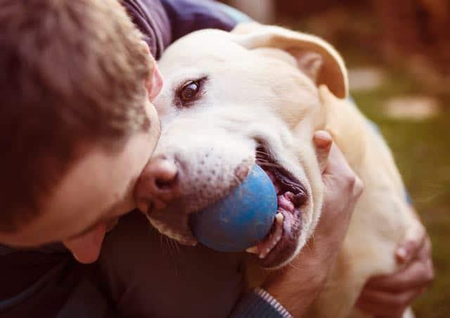 Mascotas ayudan con el estrés y ansiedad