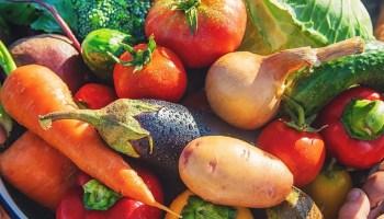 Donde encontrar mercados agrícolas en Charlotte
