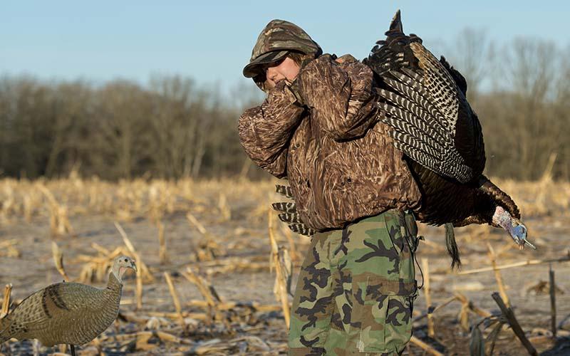 La temporada de pavos salvajes en Carolina del Norte